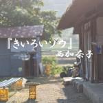 田舎に住みたい夫婦におすすめ*西加奈子『きいろいゾウ』