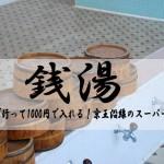 電車で行って1000円台で入れる!京王沿線の駅近スーパー銭湯