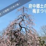 60種類1100本!東京郊外の名所「府中郷土の森」梅まつり