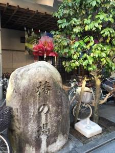tsubakiyu6