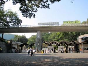 zoo-tama2