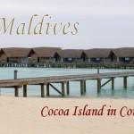 モルディブ「ココアアイランド」*新婚旅行で大満足した理由5つ