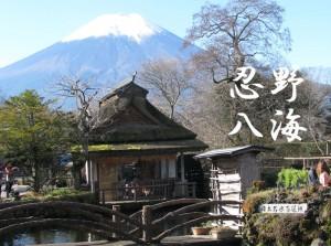 oshino-hakkai3