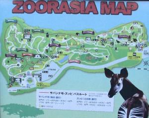 zoorasia11