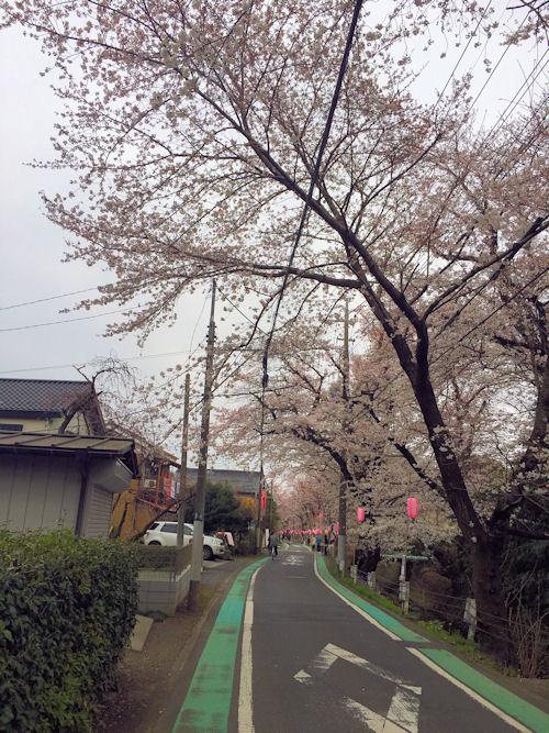 park-tokorozawa1