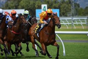 horse-racing1