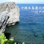 ウミガメ発見!沖縄最北端「辺戸岬」へのおすすめドライブコース