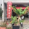 初代沖縄そば王「いしぐふー」はだしと麺のこだわりが凄い!【那覇】