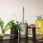 多肉植物リメイク缶の作り方*100均絵の具で錆び色を出す方法