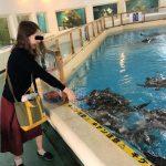 高知へ子連れ旅行!桂浜水族館はウミガメにエサやりが楽しい!