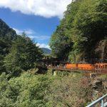 黒部峡谷トロッコ列車の旅*雨天&子連れなら特別客車が快適!