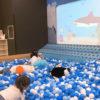 ニコグラウンドは川崎の穴場!混雑なしの幼児向け室内遊び場を発見!