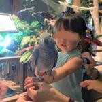オービィ横浜で動物とふれあい*平日は混雑なしで幼児もおすすめ